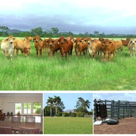 洛坎普顿农场投资项目