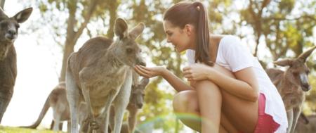 游学1线:悉尼 / 墨尔本 / 布里斯班 / 黄金海岸12日游学经典欢乐游